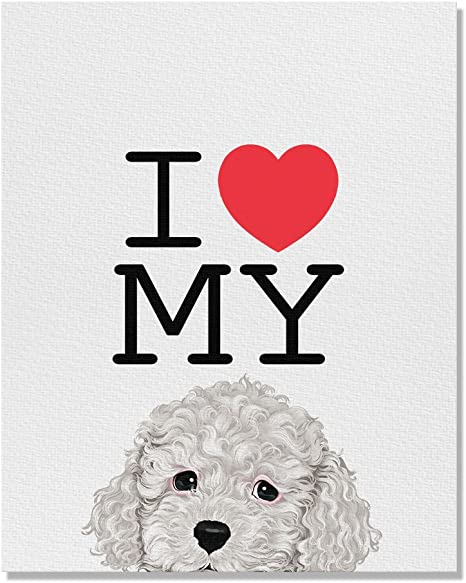 Amazon Com Wayfare Art I Love My White Toy Poodle Canvas Prints Artwork Wall Art Poster For Home Office Living Room Decorations 8 X 10 Inch Posters Prints