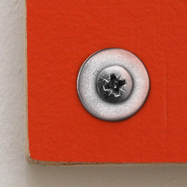 150 Pi/èces 1//4 Pouce Ensemble de Rondelles Plates Rondelles Plates en Acier Inoxydable pour D/écoration de Maison R/éparation dUsines Cuisines et Construction Ext/érieure