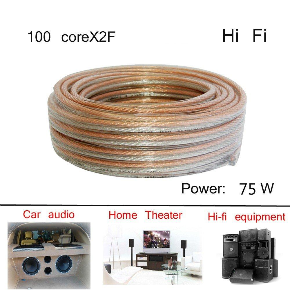 High Fidelityサウンドボックスラインホーン電源アンプ100 core2 F接続line-984inches   B07CCKBW98