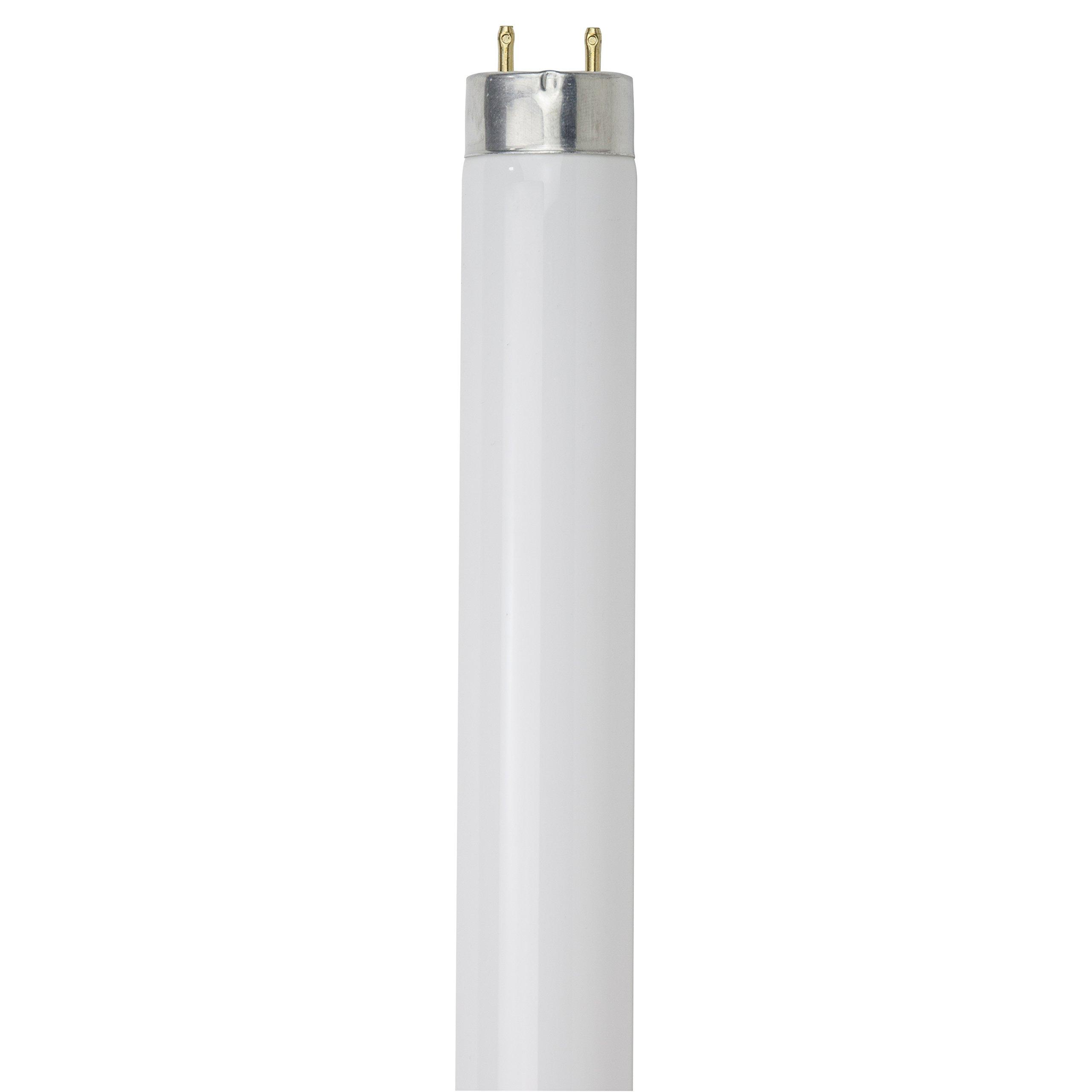 Sunlite F25T8/SP865/30PK T8 High Performance Medium Bi-Pin (G13) Base Straight Tube Light Bulb (30 Pack), 25W/6500K, Daylight