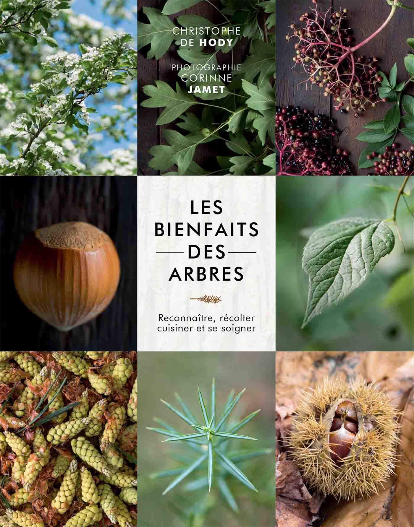 Les bienfaits des arbres: Reconnaître, récolter, cuisiner et se soigner