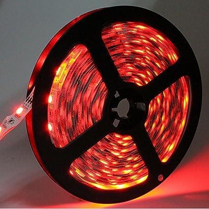Amazon joylit 12v flexible red led strip lights 300 units 5050 joylit 12v flexible red led strip lights 300 units 5050 leds non waterproof led aloadofball Gallery