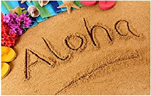 SUN-Shine Aloha Doormat Hawaiian Sand Beach Welcome Mats Non Slip Entrance Rugs Indoor/Front Door/Bathroom 20x31.5Inch