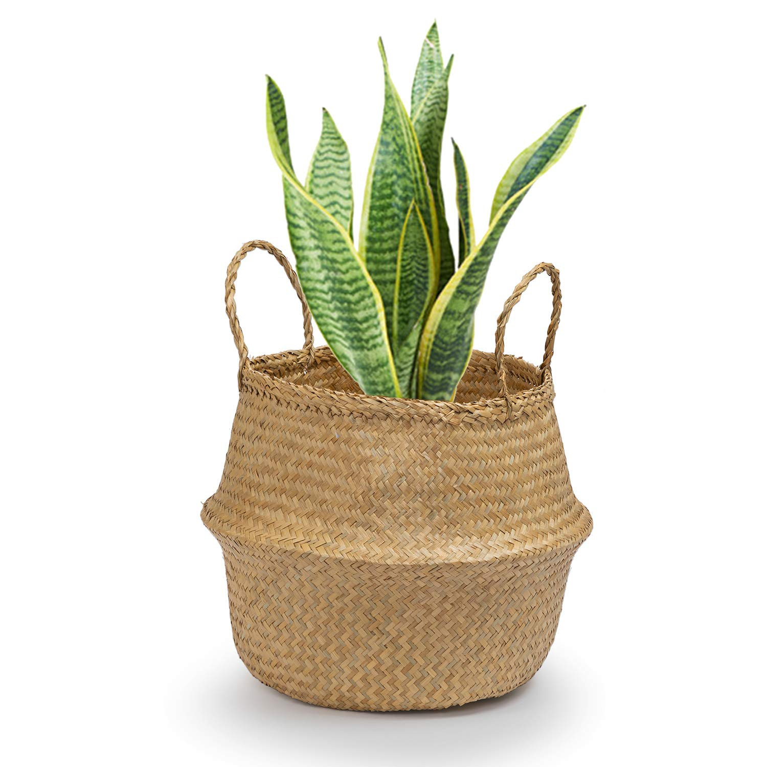Natural, Medium Decorative Woven Basket by Toma Design Toys or Laundry Plant Holder Seagrass Round Basket with Handles Picnic Basket or Indoor Storage for Blankets
