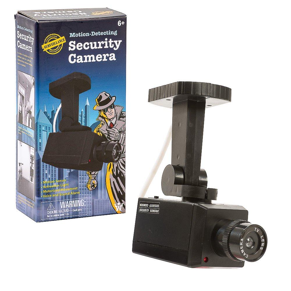 Funtime Gifts Eg7965Caméra de sécurité avec détecteur de Mouvement/lumière et Activation de la Voix, Noir