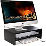 """OULII Monitor Stand Desk Riser 16.9"""" x 9.4"""" x 5.5in"""", with Storage Shelf"""