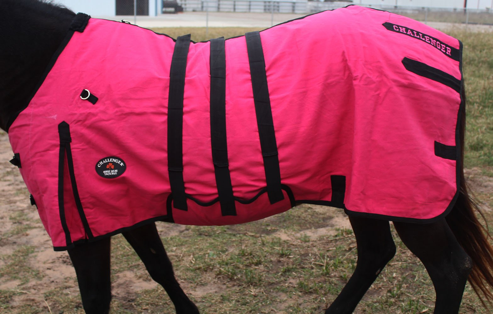 78'' Canvas Duck Turnout Water Resistant Horse Winter Blanket BellyBand 2524