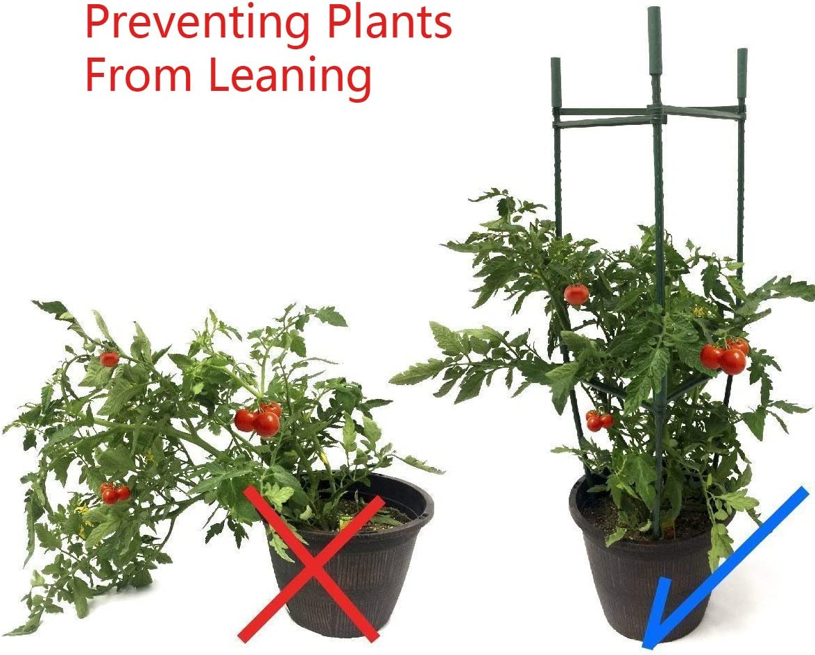 F.O.T Juego de 3 estacas Resistentes para Plantas de Jardín, con ...