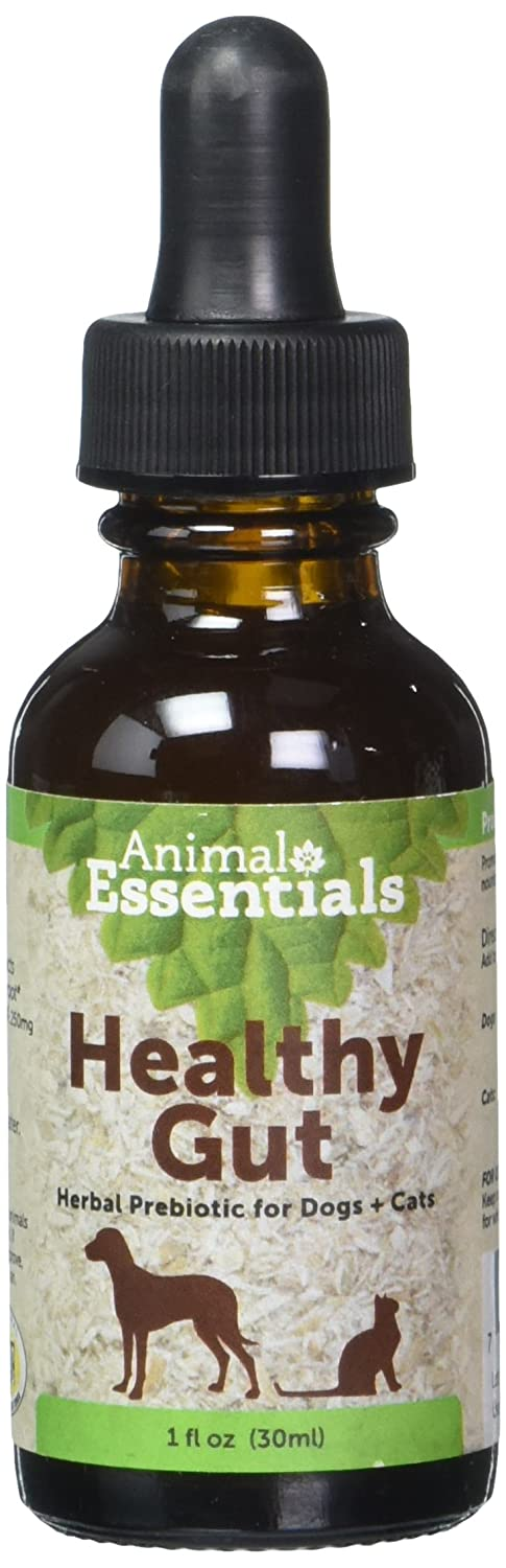 Animal Essential APAWTHECARY PREBIOTIC PLUS (Digestion) 1 oz - For Dogs Cats Animal Essentials 9001035