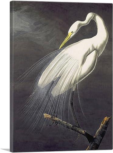 ARTCANVAS Great Egret Canvas Art Print