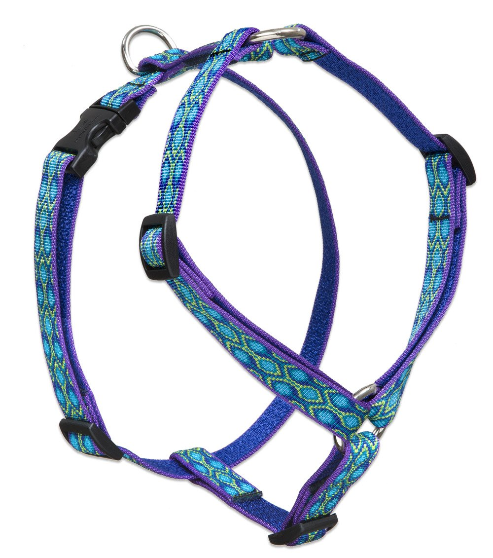 3 4\ LupinePet Originals 3 4  Rain Song 14-24  Adjustable Roman Dog Harness for Medium Dogs