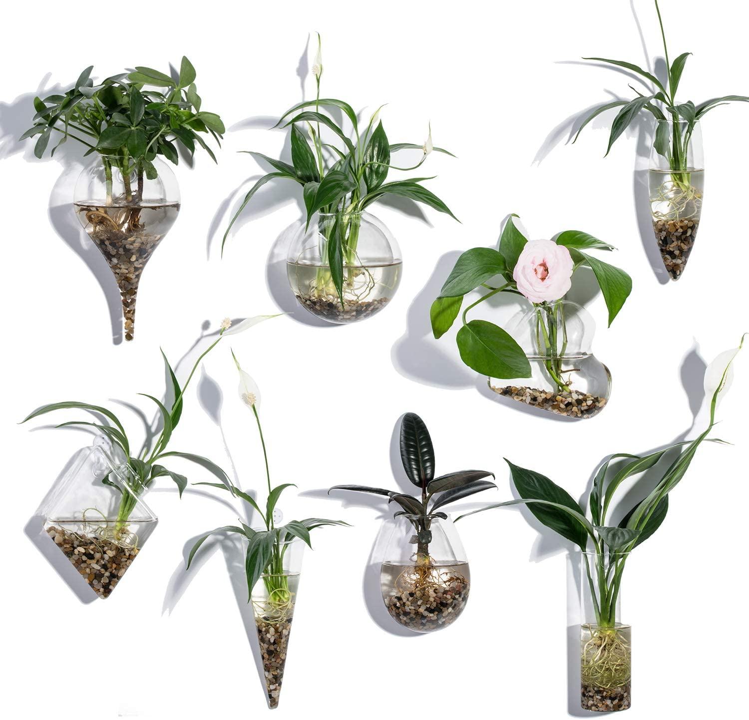 Wall Hanging Glass Terrariums Planter Glass Flower Vase for Hydroponics Plants, Home Office Living Room Decor,