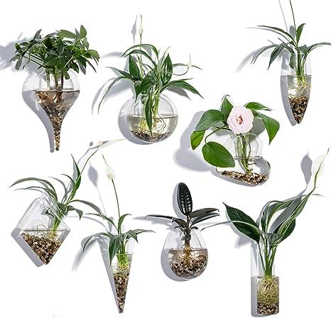 Knikglass Juego De 8 Jarrones Geométricos De Cristal Para Plantas De Agua O Flores Decoración De Pared De Jardín Style4 Amazon Es Hogar