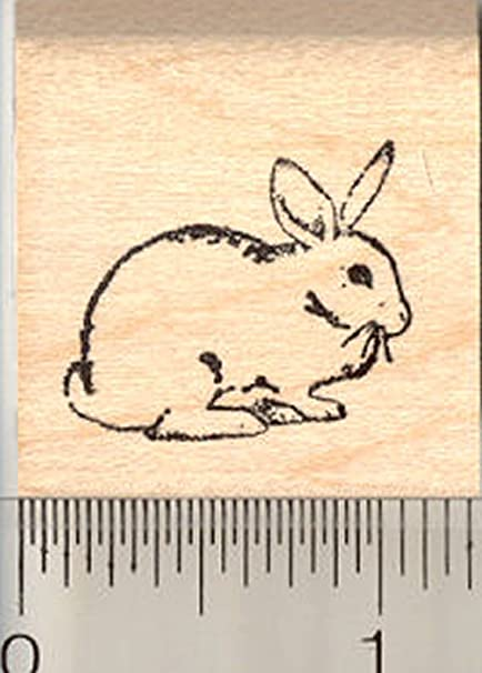 Amazon Rabbit Rubber Stamp White Bunny With Dewlap Small