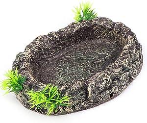 Aqua KT 1 PCS Amphibian Water Bowl Food Dish for Reptile Lizard Snake Terrarium Decoration