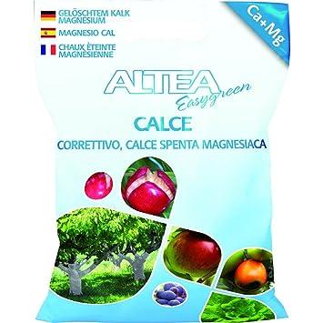 ALTEA Calce in polvere 4kg - Piante orto giardino concimi granulari: Amazon.es: Jardín