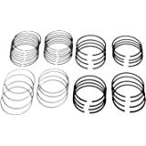 Sealed Power E251X60 Piston Rings