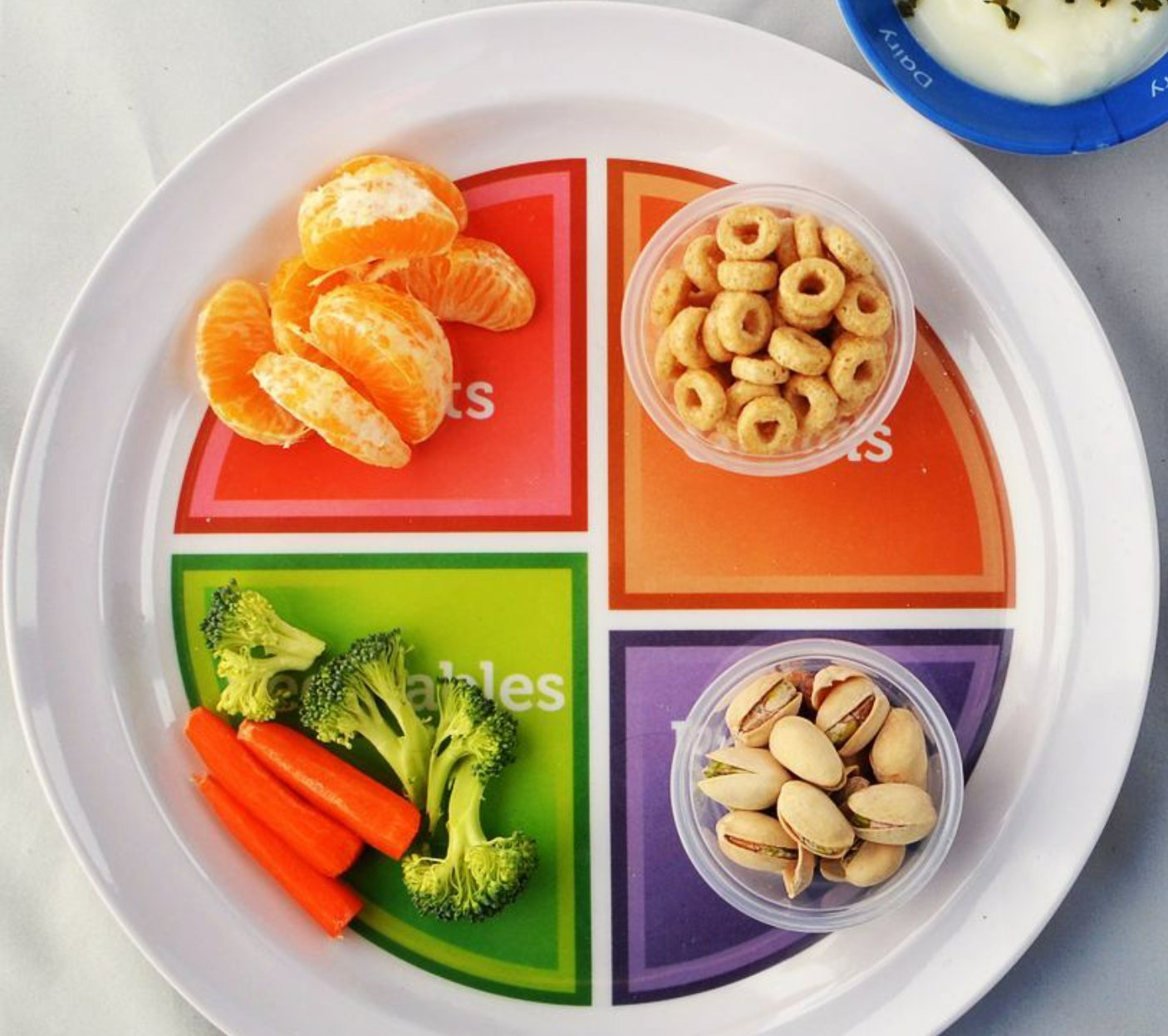 Amazon choose myplate 10 inch plate for adults teens amazon choose myplate 10 inch plate for adults teens spanish healthy food and portion control dinner plates dinner plates pooptronica