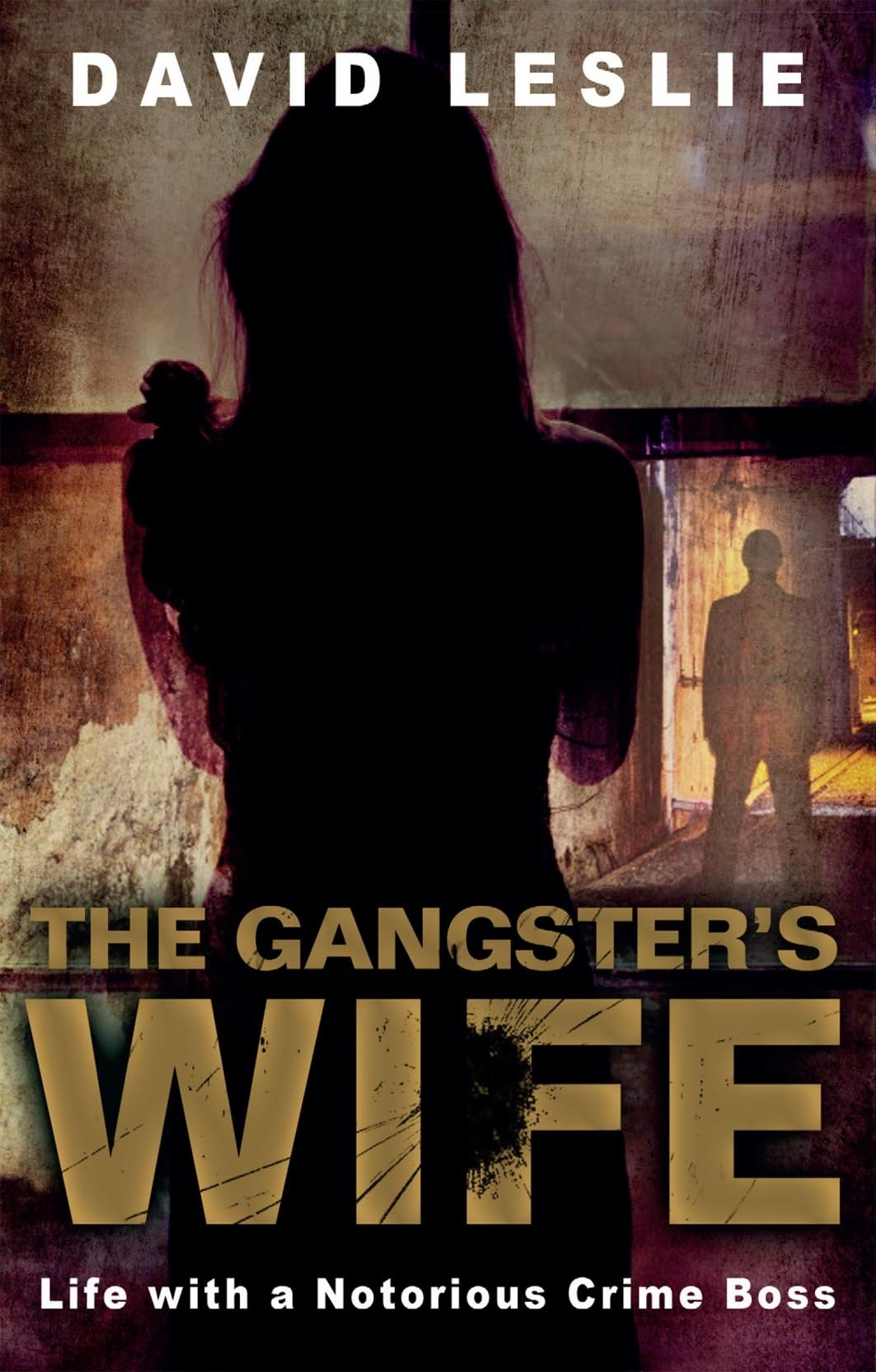 Gangster's Wife: Life with a Notorious Crime Boss pdf
