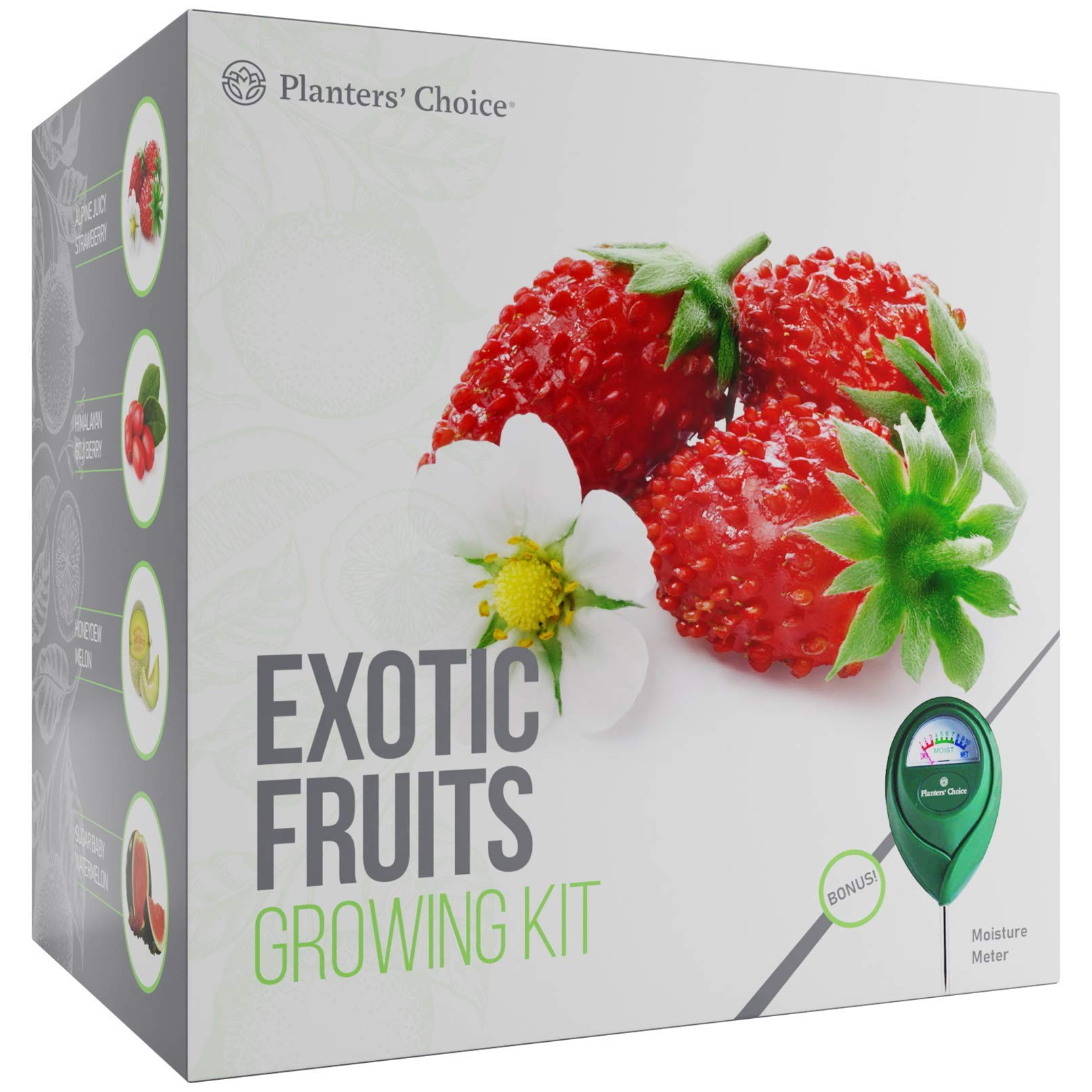Exotic Fruits Growing Kit - Everything Included to Easily Grow 4 Unique Fruits - Strawberries, Goji Berries, Honeydew, Watermelon + Moisture Meter by Planters' Choice