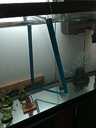 Aquarium tank divider for 29 55 gallon for Fish tank divider 55 gallon
