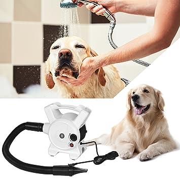 DADYPET Secador para Perros Temperatura Velocidad Ajustable 2400W Estándar Europeo: Amazon.es: Productos para mascotas