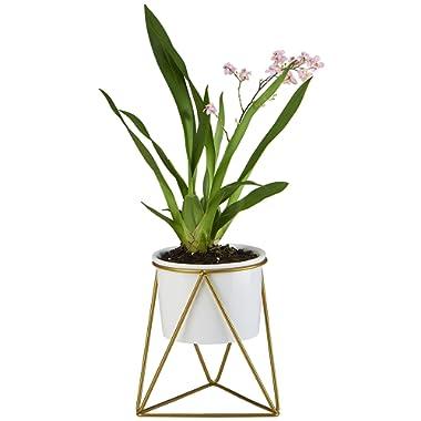 FLOWERPLUS Planter Pot Indoor, 4.33 Inch White Ceramic Medium Succulent Cactus Flower Plant Round Bowl with Metal Stand Holder and Plants Sign for Indoors Outdoor Garden Kitchen Decor (Golden)