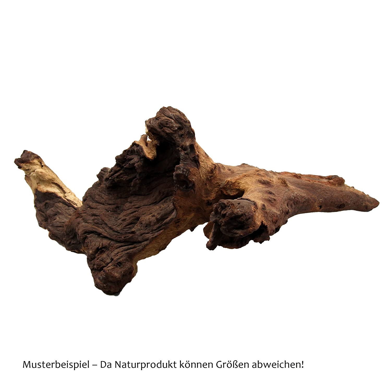 Burl de la Nuez Acuario y terrario ra/íz de mopani JBL 6701300