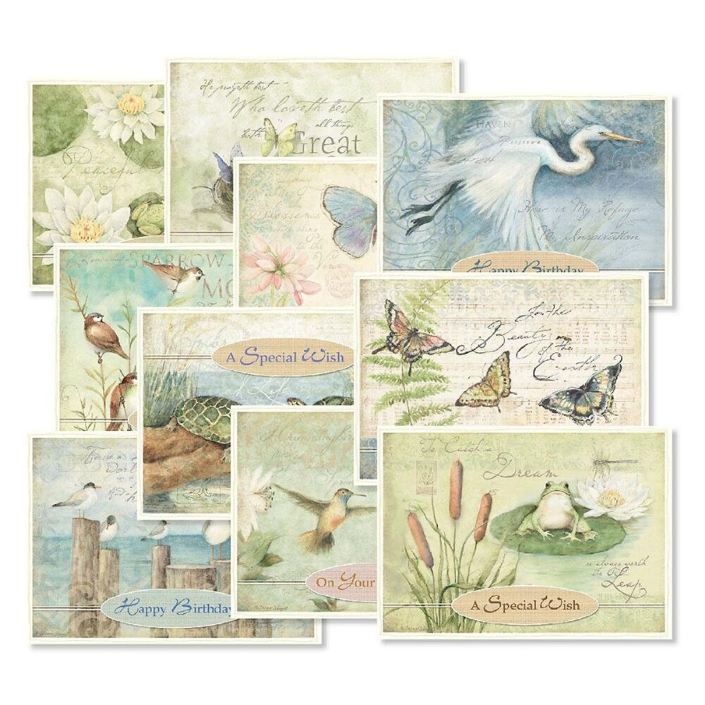 Natures Sanctuary Birthday Greeting Cards Value Pack