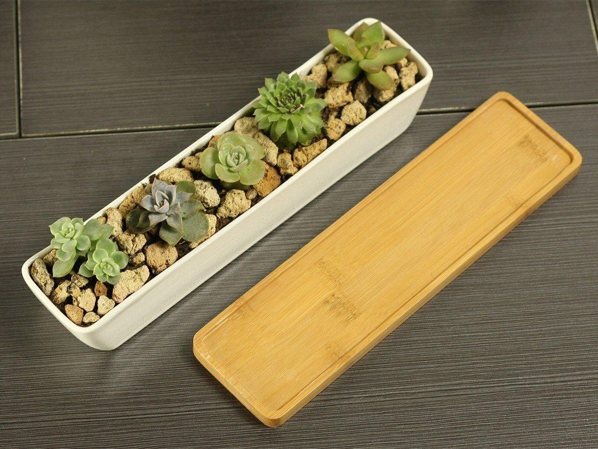 Vaso Rettangolare Stretto Vaso Rettangolare per piante grasse e cactus, in ceramica bianca, con vassoio di bambù
