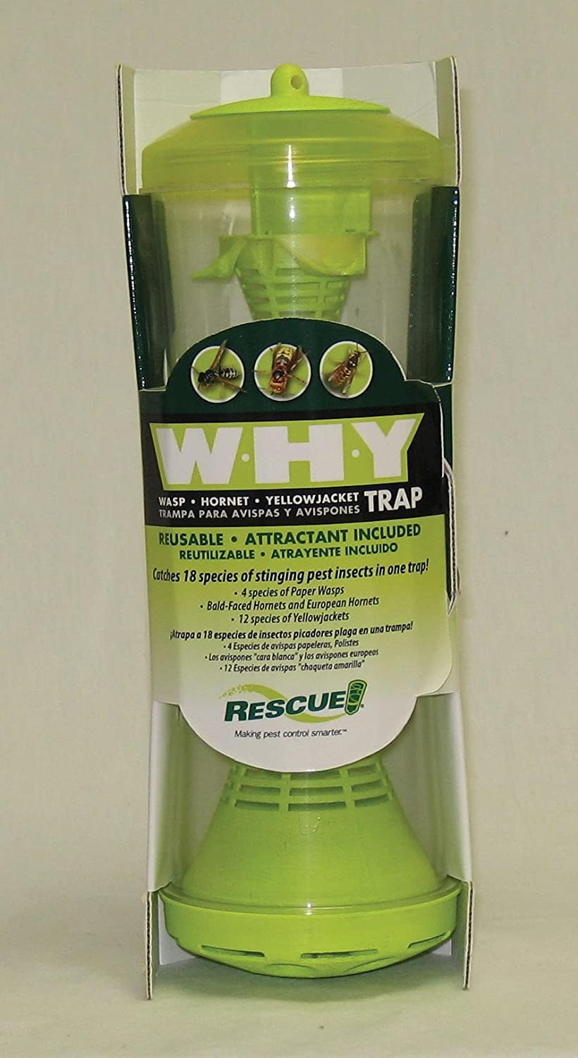 Amazon.com: STERLING INTRNTL RESCUE W-H-Y Wasp Hornet & Yellowjacket Reusable Trap: STERLING INTRNTL RESCUE: Beauty