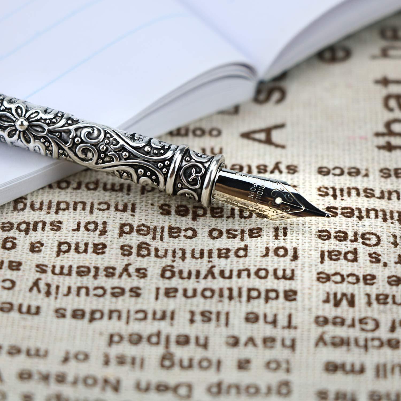 Penna calligrafia antica vintage 100/% artigianali Serpente rosso vera piuma Set di penne di piume con 10 pennini in acciaio inossidabile extra