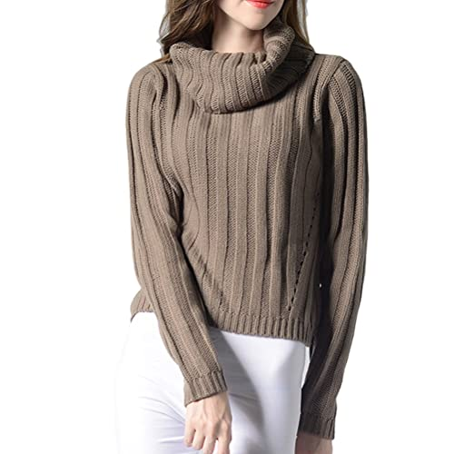 Zhuhaitf Agradable High Round Neck Long Sleeved Sweater Special Weave Casual for Women