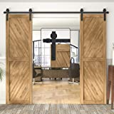 """WINSOON 5-18FT Sliding Barn Wood Door Hardware Cabinet Closet Kit Antique Style for Double Doors Black Surface (10FT /120"""" 2"""