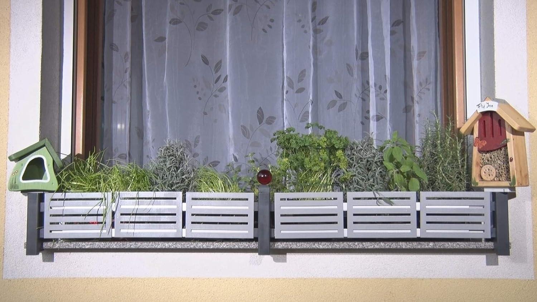 GREEN CREATIONS Blumenkastenhalterung masu Basis-Set passt auf Jede Fensterbank von 78 cm bis 140 cm ohne Bohren ohne Besch/ädigung der Fassade Basisset: Classic, Anthrazit