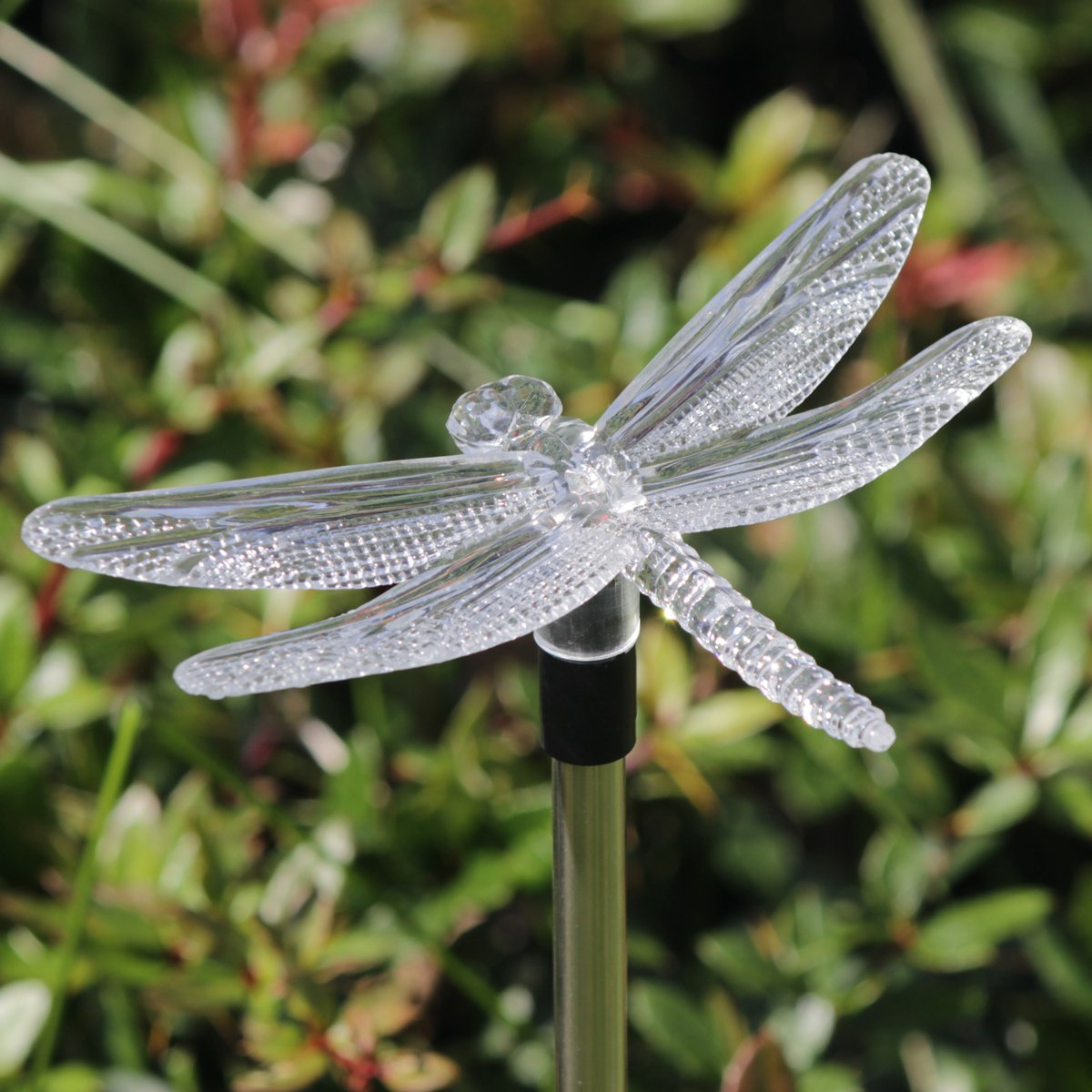 Amazon.com : SET OF 3 - Hummingbird, Butterfly & Dragonfly Color ...