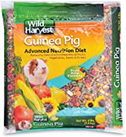Wild Harvest Advanced Nutrition Diet for Guinea Pigs (Packaging may vary)