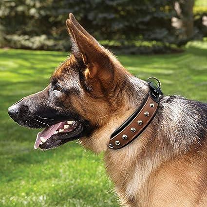 MAOBANG Collar Collares de Perro con Tachuelas Mediano Grande ...