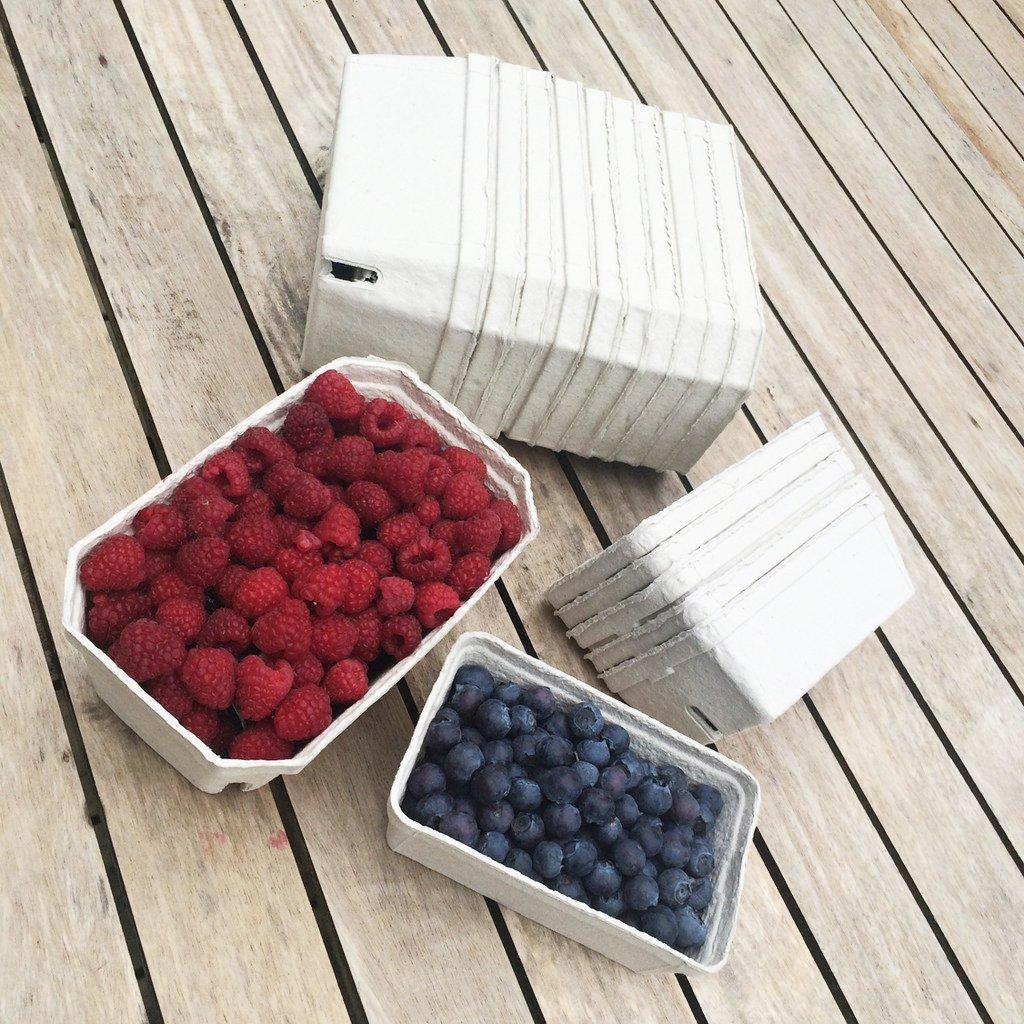 Nutleys 250 g Fibre Biodegradable Fruit Punnet Pack of 250