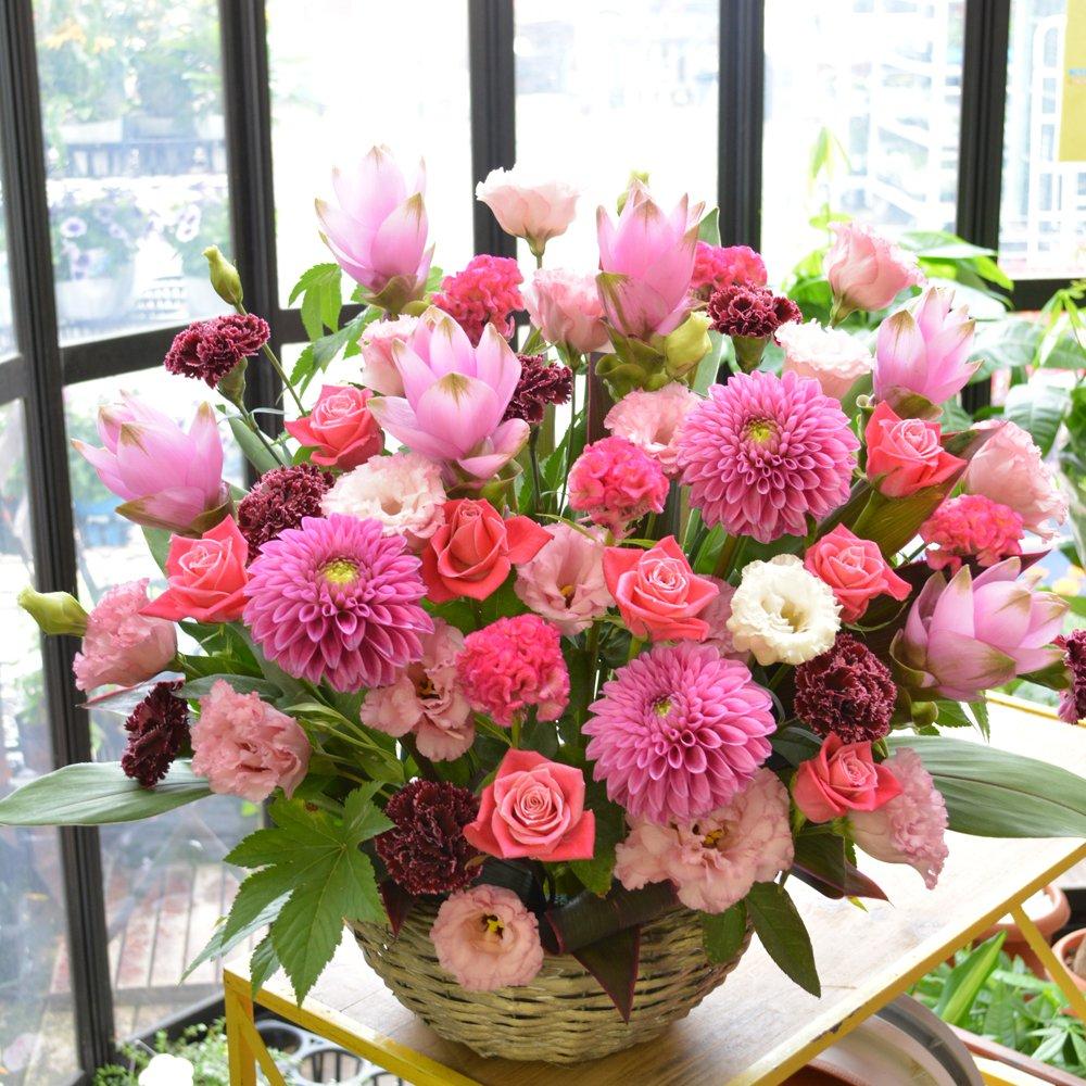 [エルフルール]【立て札可】フラワーギフト カラーが選べる 店長おまかせお祝い花 移転祝い 開業祝い 開店祝い 開院祝い (ピンク系) B01GMZ9W6Y  ピンク系