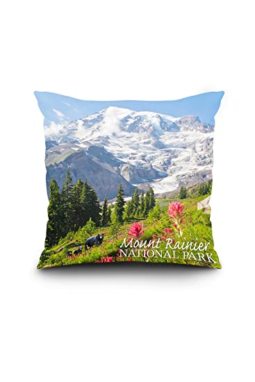 Amazon.com: Mount Rainier National Park – Familia de montaña ...