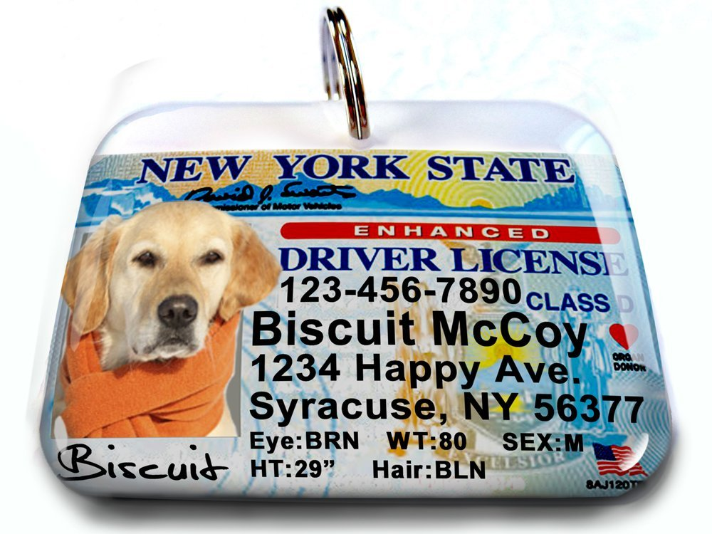 New York driver license state license identification tags for pets (Large 2.00'' x 1.50'')