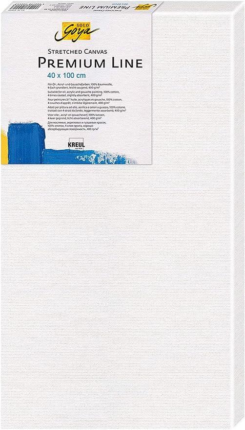 Solo Goya Premium Line - Bastidor de lienzo de algodón con 4 capas de imprimación, ideal para pinturas de aceite, acrílico y gouache, aprox. 40 x 100 cm: Amazon.es: Hogar