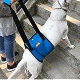 Diyafas Arnés de Rehabilitación de Apoyo para Perros Eslinga de Ayuda Auxiliar for Mascotas Discapacitados Lesionados