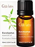 Gya Labs Eucalyptus Essential Oil - Body Booster for Easy Breathing & Stress Relief (10ml) - 100% Pure Natural…