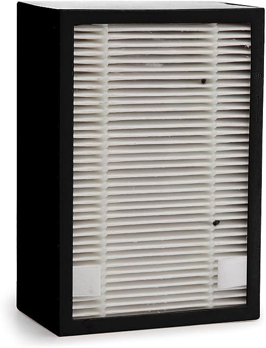 PURLINE 415BM-PUR-Filtro para purificador de aire BIOMED 101: Amazon.es: Hogar