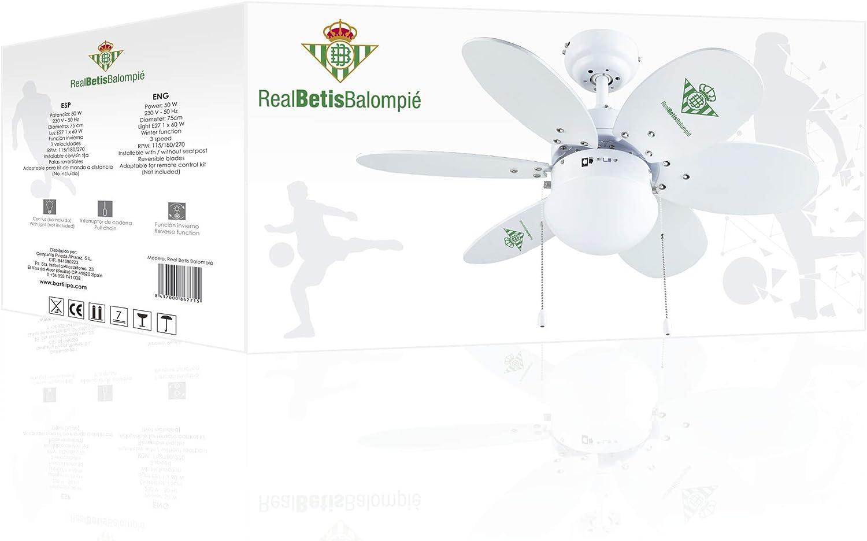 Bastilipo 7715-Real Ventilador de Techo con Palas Reversibles ...