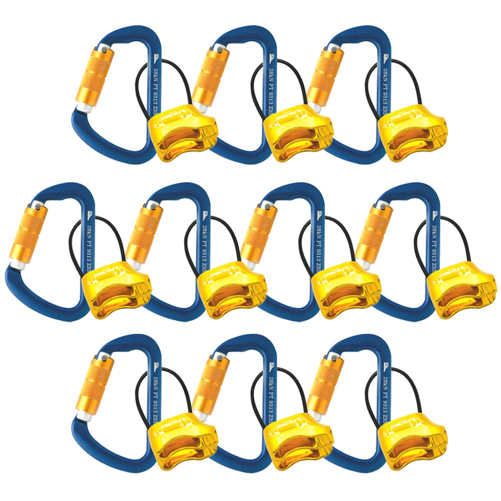 Fusion Climb Carabiner Belay Combo Pack Blue Gold 10-Pack