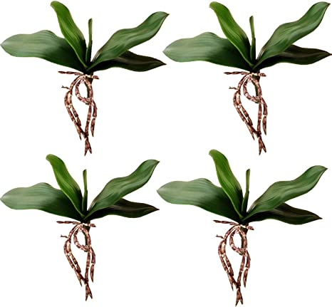 Yokoke 4 Pcs Big Size Artificial Green Phalaenopsis Simulation Moth Orchid Leaf Real Latex Touch Green Plant 5 Petals For Flowers Garden Bonsai Decor 10 Home Kitchen