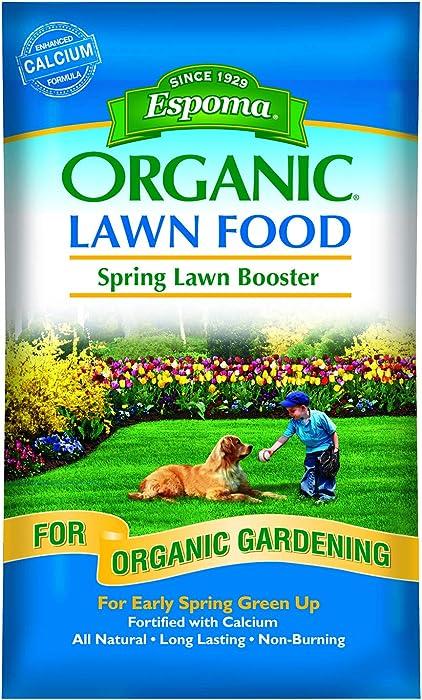 Top 8 Affordable Organic Food